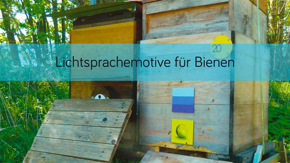 Lichtsprachemotive für Bienen
